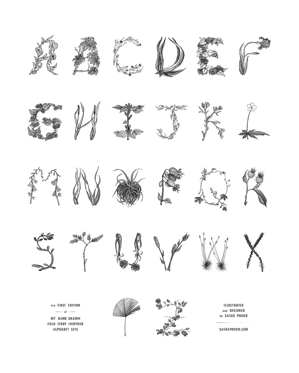 Illustrator Sasha Prood alphabet